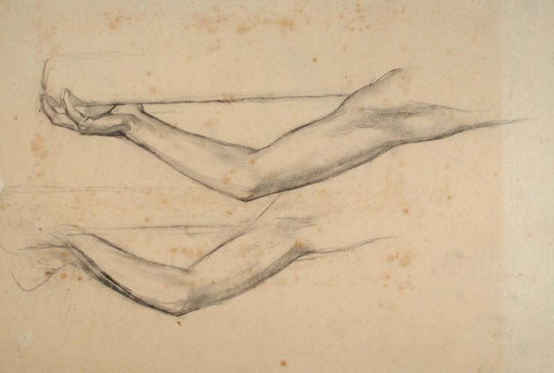 Etude de bras féminins_0
