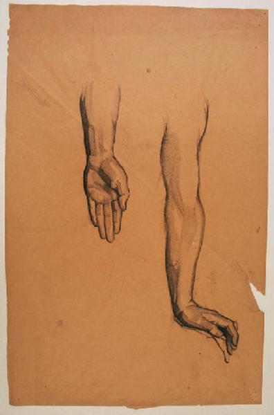 Etudes de bras et de main gauches pour le groupe central du Pin des Landes_0