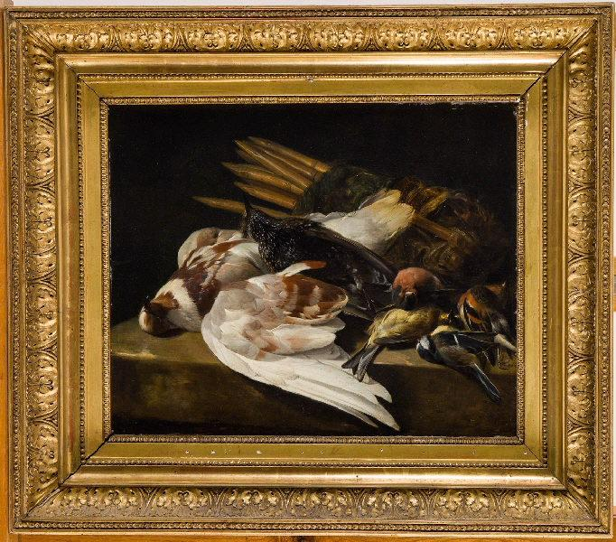 Nature morte d'oiseaux_0