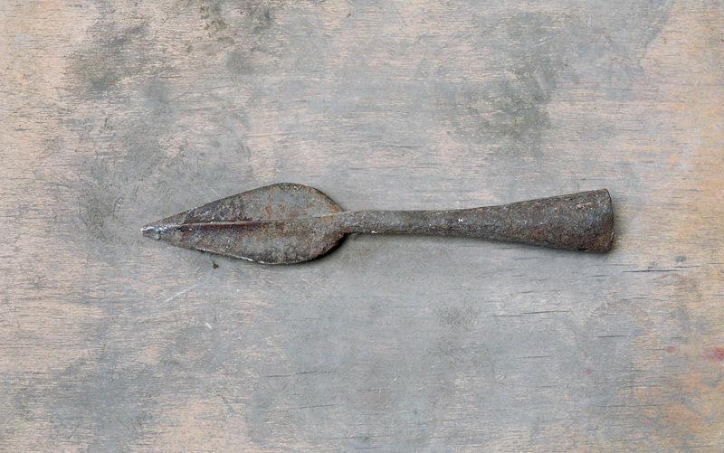 Pointe de lance, fer de lance_0