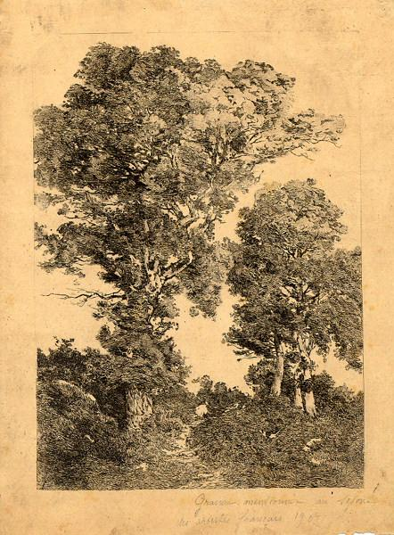 GUDIN DE VALLERIN Etienne (graveur) : Paysage boisé