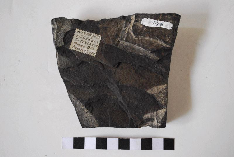 anonyme (sculpteur) : Fragment de corniche taillé et mouluré