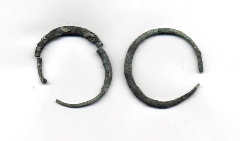 anneau (2), boucle d'oreille