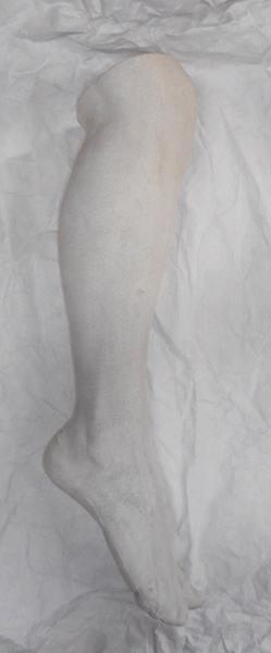 Jambe et pied humain_0