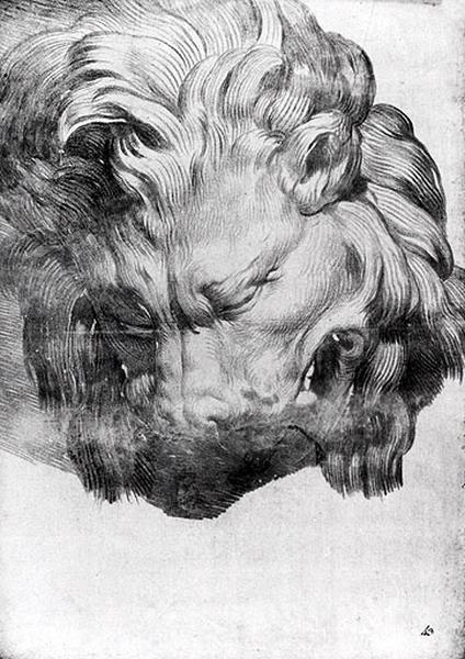 Tête de Lion_0