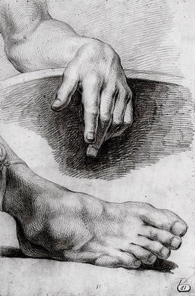 Etude de pied et main (recto) ; Demi torse d'homme (verso)_0