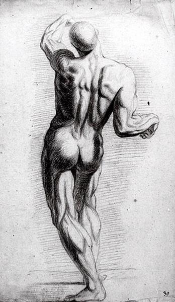 Homme vu de dos, le bras gauche levé (recto) ; Homme vu de dos, le bras gauche levé (verso)_0