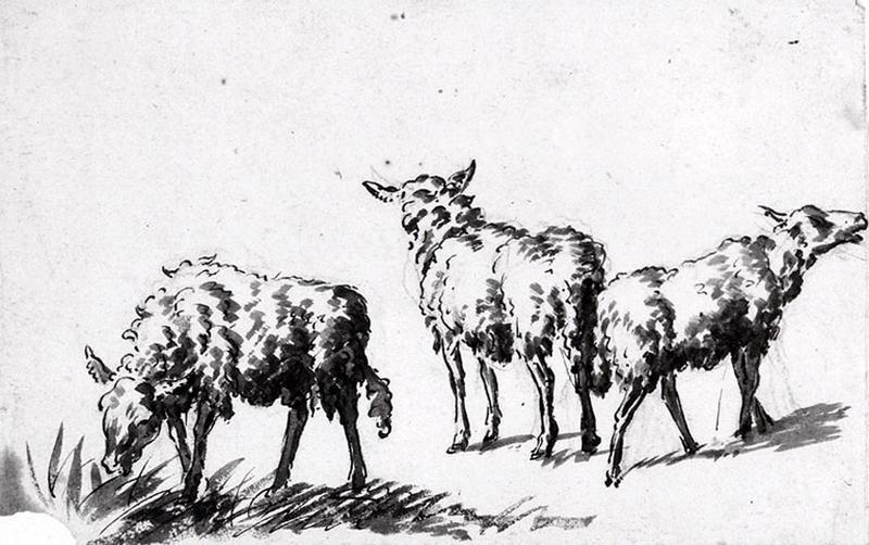Trois moutons_0