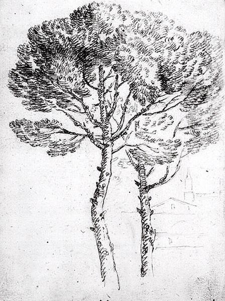 Deux arbres avec des bâtiments au loin_0