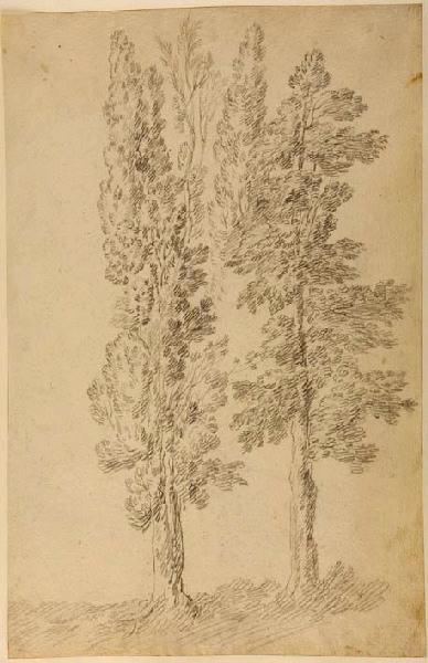 Deux arbres_0