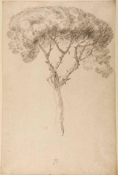 Un arbre_0
