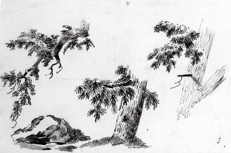 Etudes de branches_0