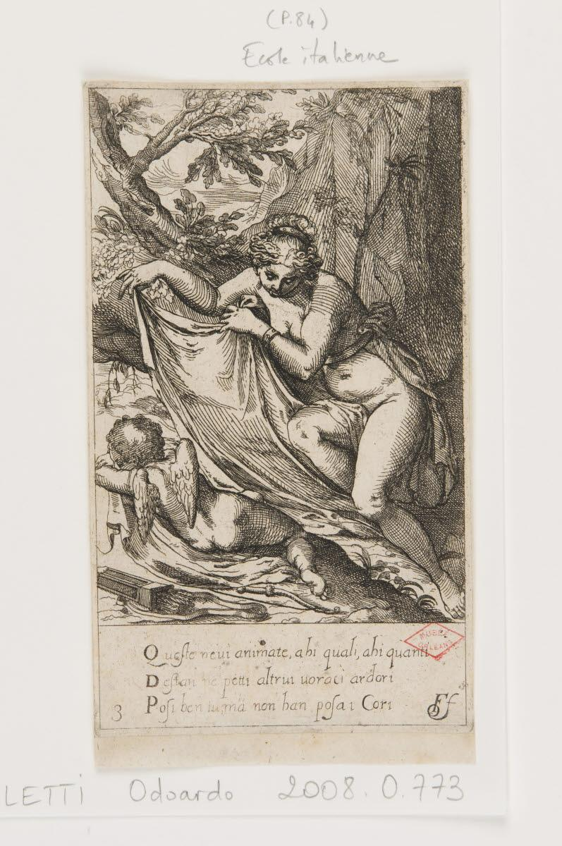 Vénus et l'Amour endormi_0