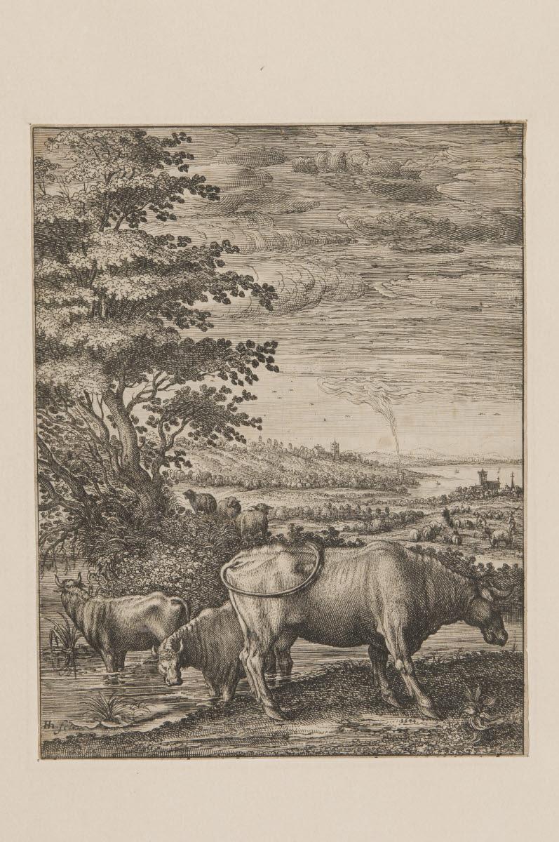 Vaches dans un paysage_0