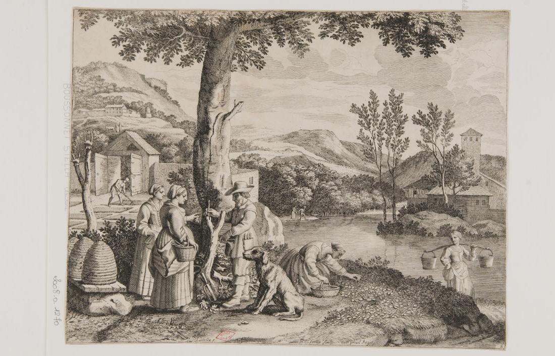 La culture des jardins et la greffe des arbres fruitiers_0