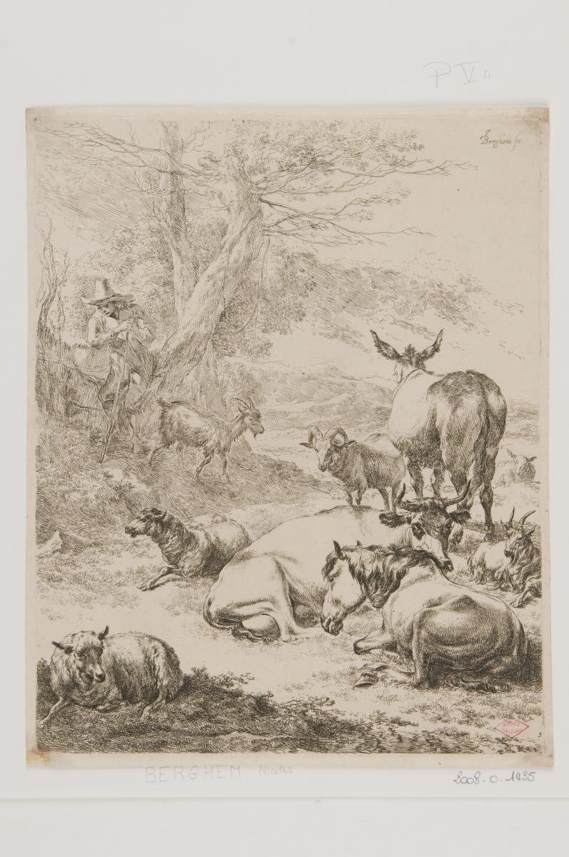 Le troupeau au repos_0