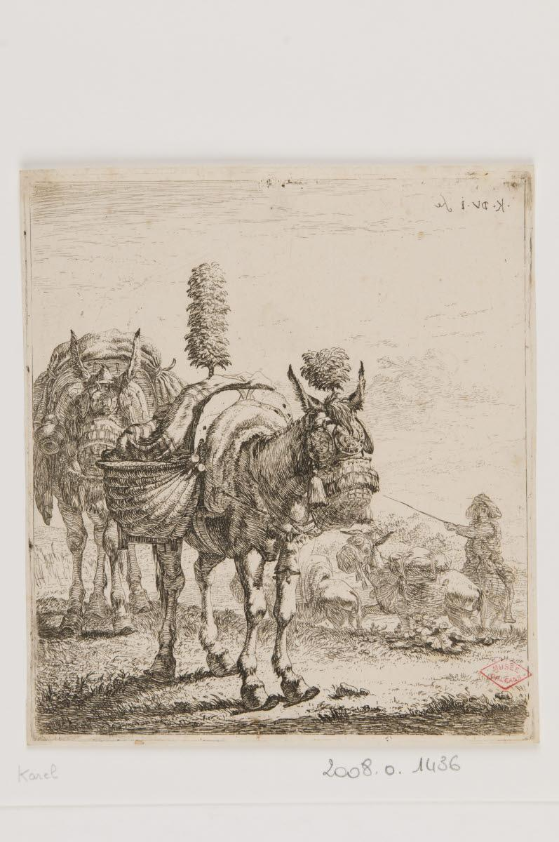 Des ânes batés_0