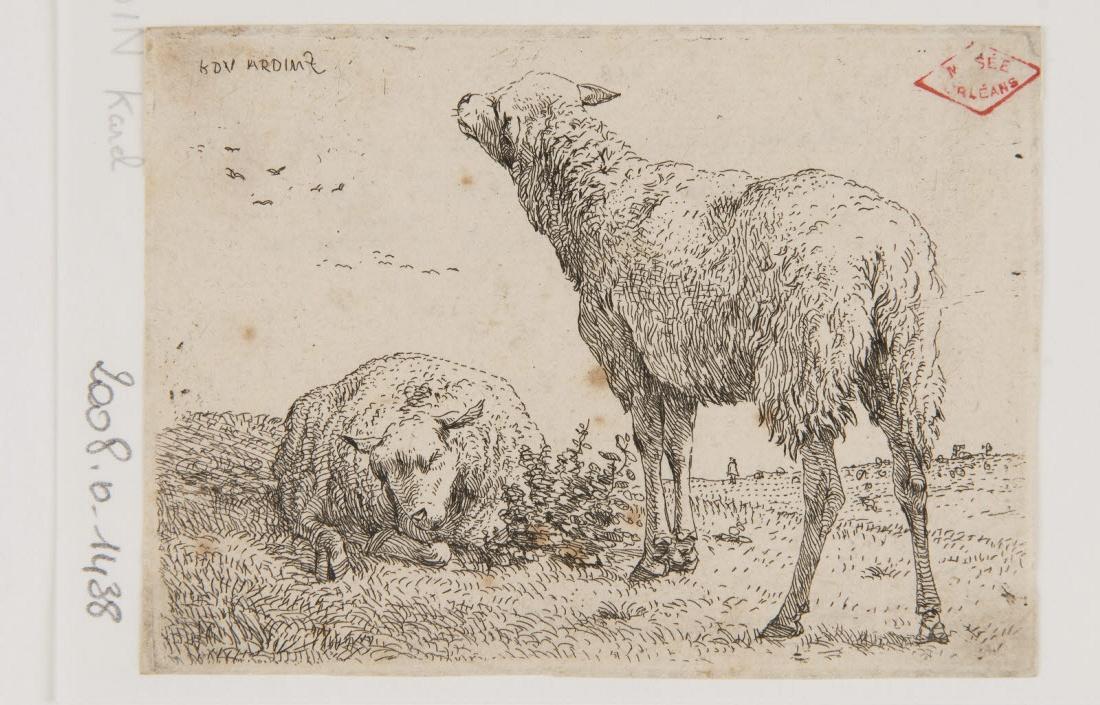 DUJARDIN Karel (graveur) : Deux moutons