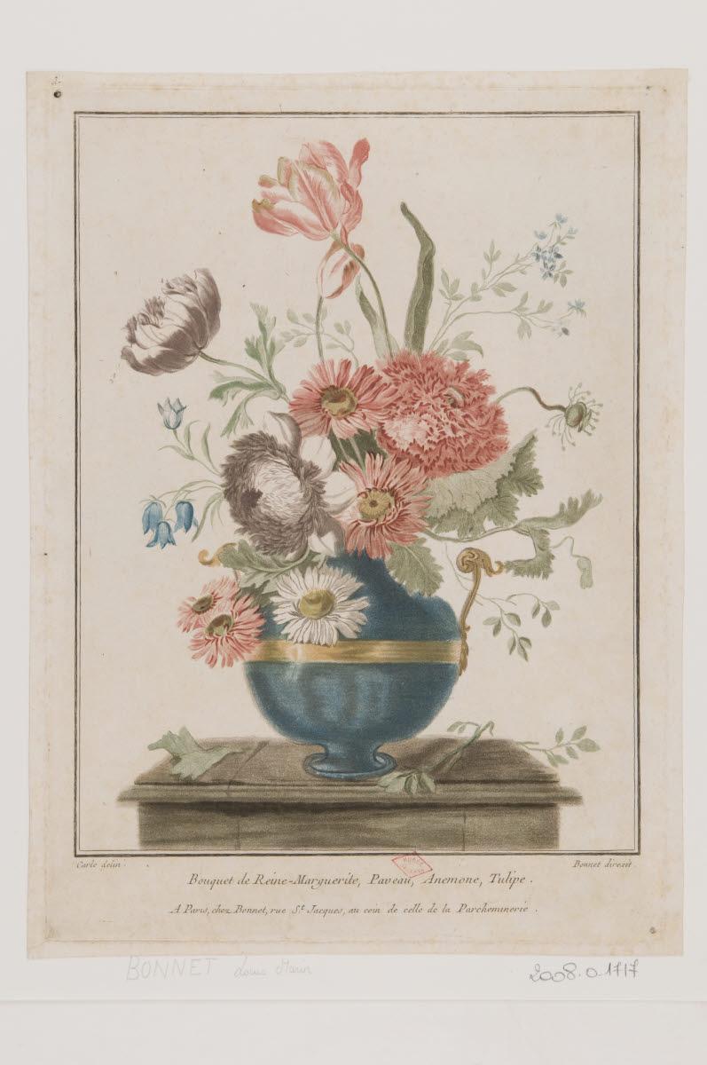 Bouquet de reine-marguerite, paveau, anémone, tulipe_0
