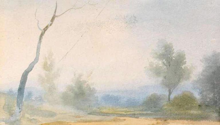 Paysage boisé avec à gauche un arbre mort_0