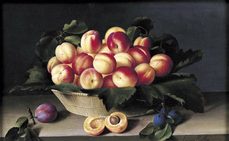 Nature morte aux abricots ; fruits_0