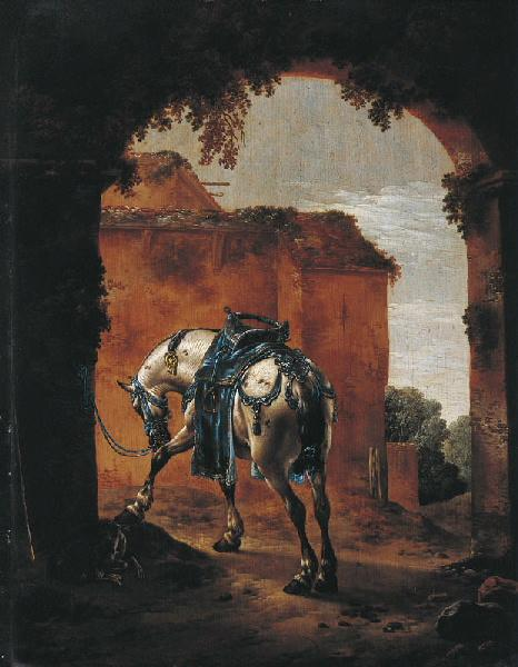 Cheval d'amazone sous un porche (Titre de David Fiozzi) ; Cheval d'amazone_0
