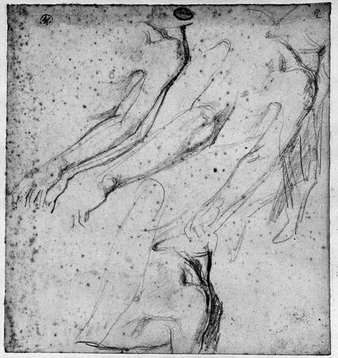 Antiochos (Quatre études pour son bras gauche et son épaule)_0