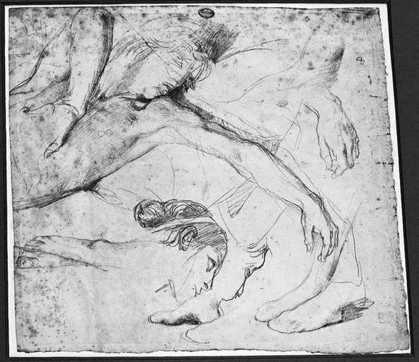 Antiochos (Haut du corps et reprise de la main gauche)