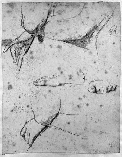 Stratonice (Deux études pour ses bras, et une pour ses pieds)_0