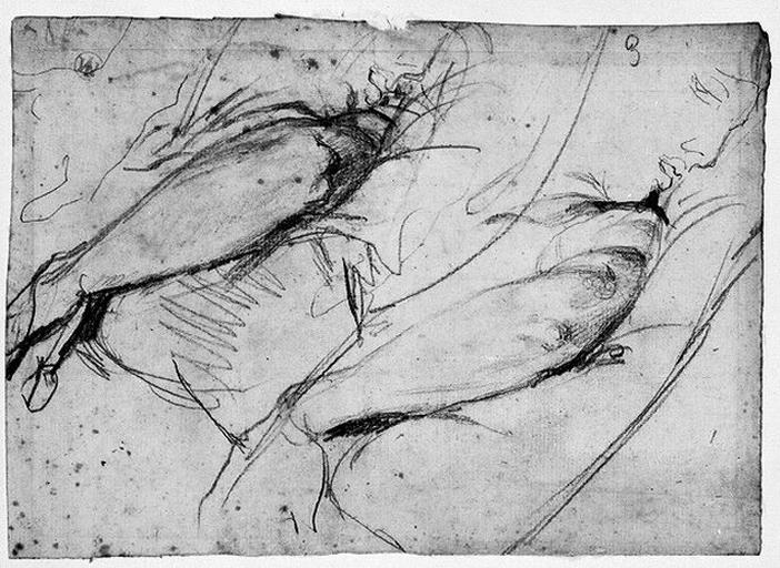 Antiochos (Deux profils et deux bras gauches)_0