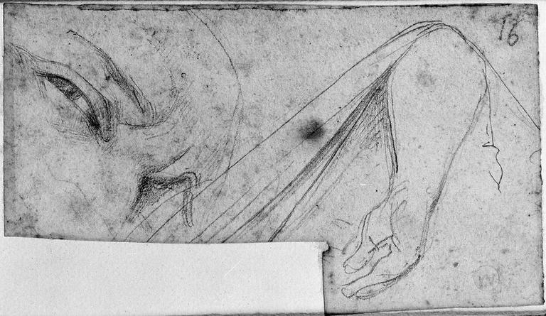 Antiochos (Sa tête, et son bras droit soulevant une couverture.)
