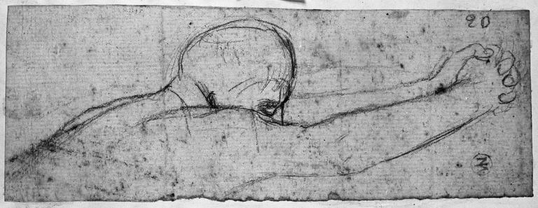 Seleucos (Sa tête et ses bras tendus en avant, les mains jointes)