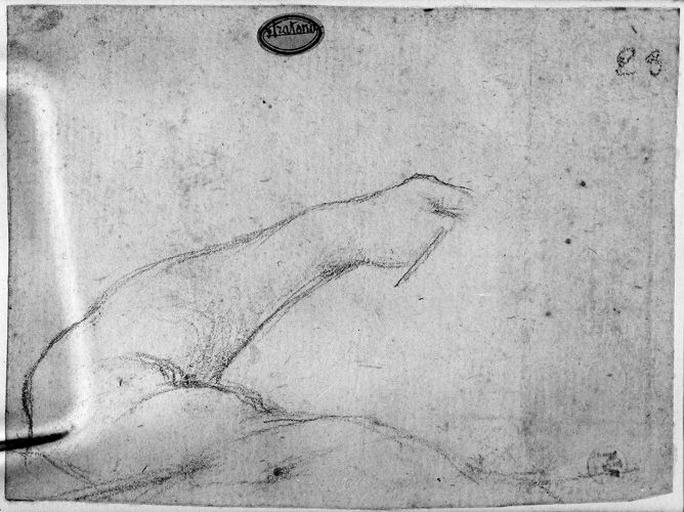 Seleucos (Son bras gauche, en partie caché par un objet indéterminé)_0