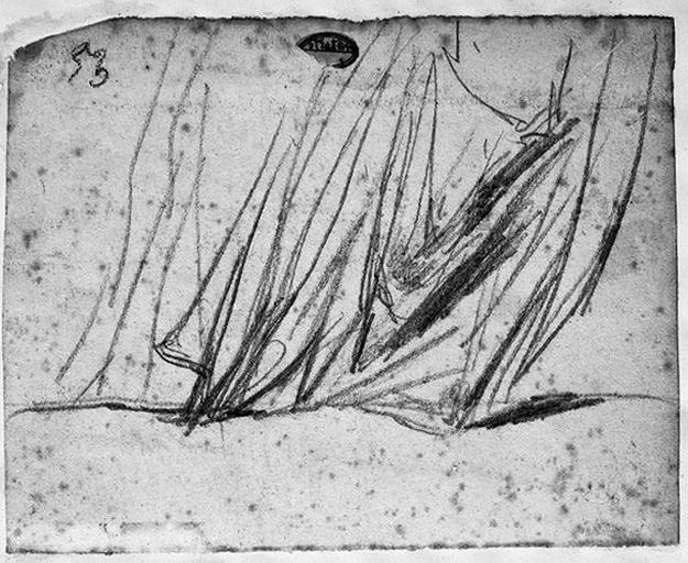 Seleucos (?) Partie postérieure d'un manteau