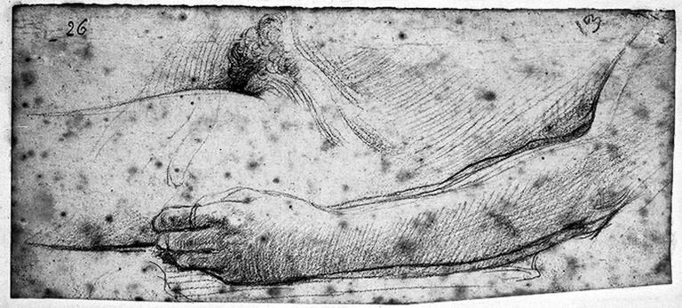 Octavie (Son bras gauche et son pubis)_0