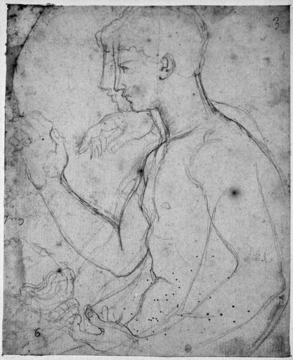 Auguste (Son buste, nu, de profil à gauche, la main droite levée, avec la tête d'Octavie ; et reprise d'une main et du profil). Verso : croquis illisible (bas d'un personnage assis ?)_0