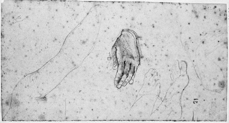 Livie (Ses deux bras, et sa main gauche à part, et deux pieds tournés vers la droite)
