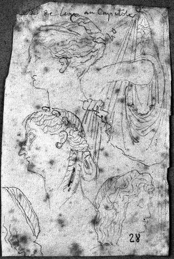 Quatre études de coiffures (et une de manche de tunique d'après l'antique)