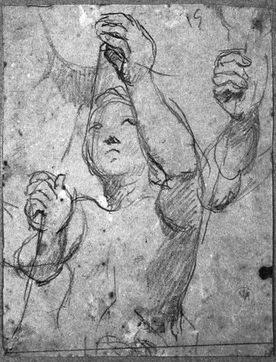 Ange adorateur (celui de droite, avec reprise du bras droit)
