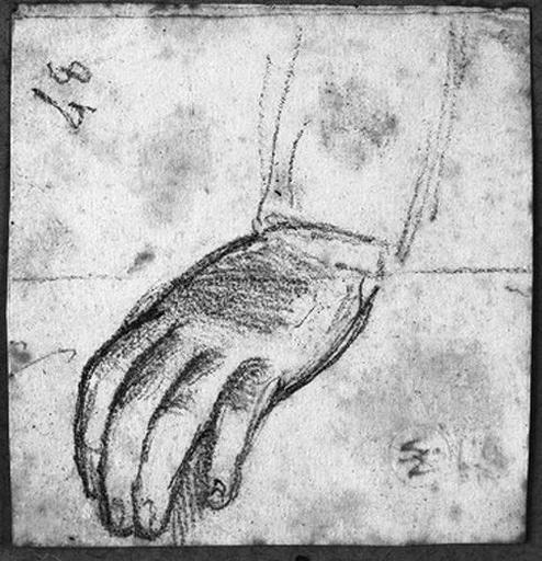Main gauche (Nue, tête inclinée, les bras pliés)_0