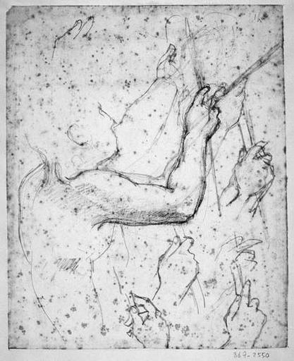 Louis XIII (Son profil, son bras plié et plusieurs reprises des mains)_0