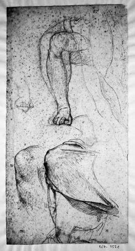 La Vierge (Sa jambe droite nue, un peu la gauche, et deux genoux, dont un drapé)_0