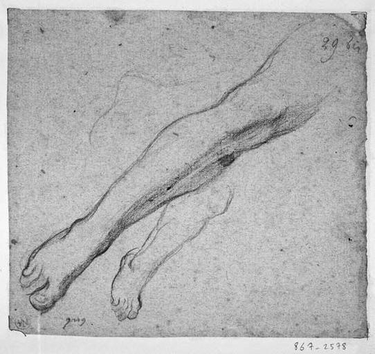 Ange de droite (Deux études de jambe)_0
