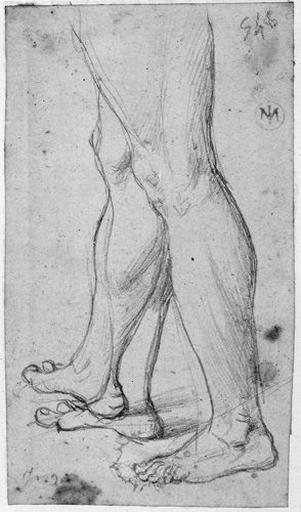 Jambes nues (de profil à gauche, avec variante pour la droite)