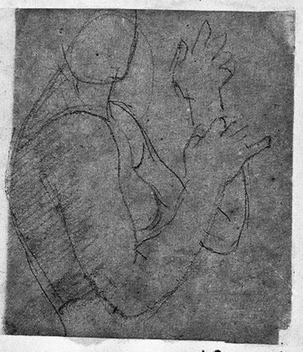 Harpistes (Nue, à mi-corps, de profil à droite)_0