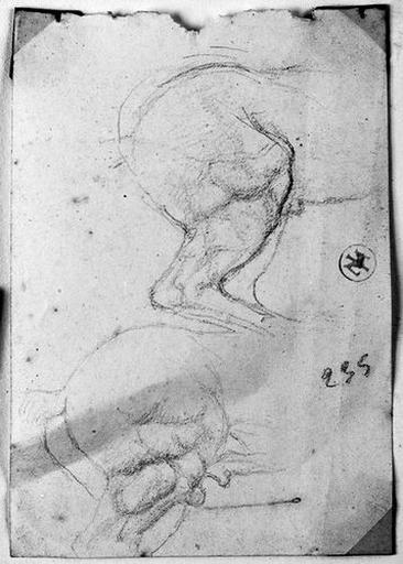 Arrière-train d'un cheval (de profil à droite, deux étude). Verso : Peinture décorant un plafond (femme avec une draperie volante)_0