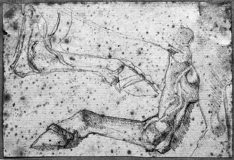 Deux Jambes postérieures de cheval ; Verso : Jeune homme nu, portant une cape, de profil à droite et la jambe droite pliée_0