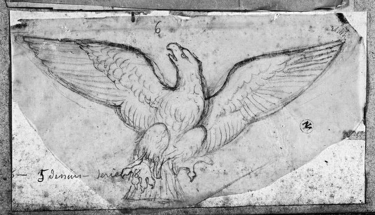 Un aigle (Aux ailes déployées)