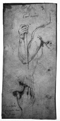 César (Son bras droit et une main fermée)_0