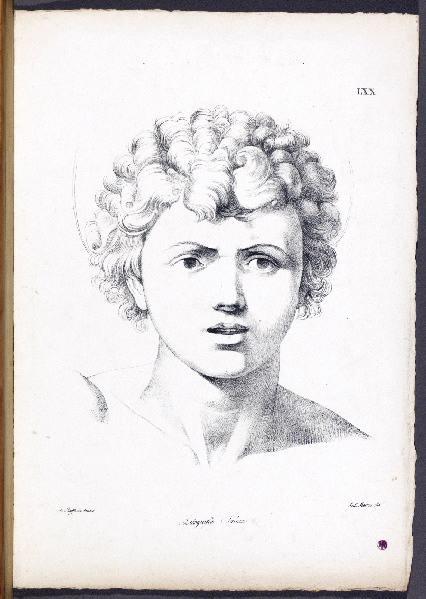 RAPHAEL (d'après), MARINI Antonio (dessinateur), SALUCCI (lithographe, imprimeur)